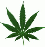 marijuana_leaf-s1